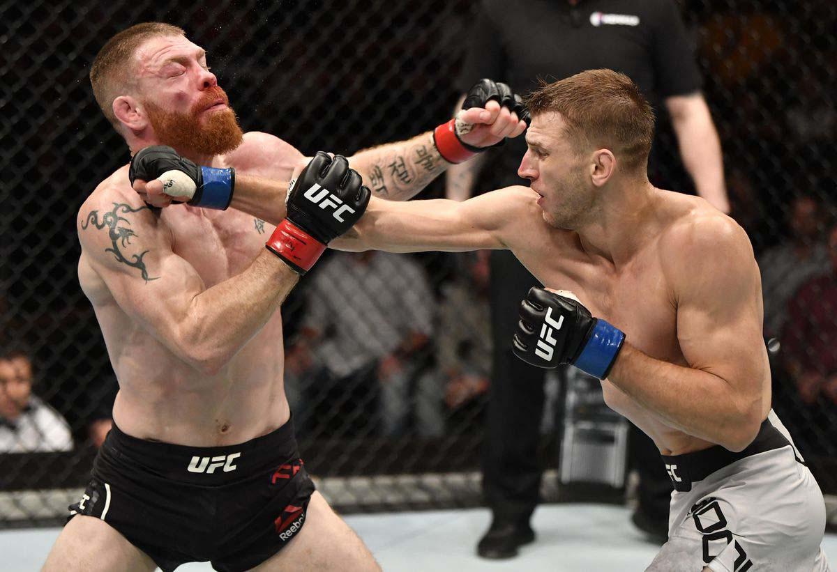 Dan Hooker UFC Knockouts